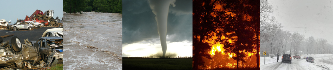 disasters collage