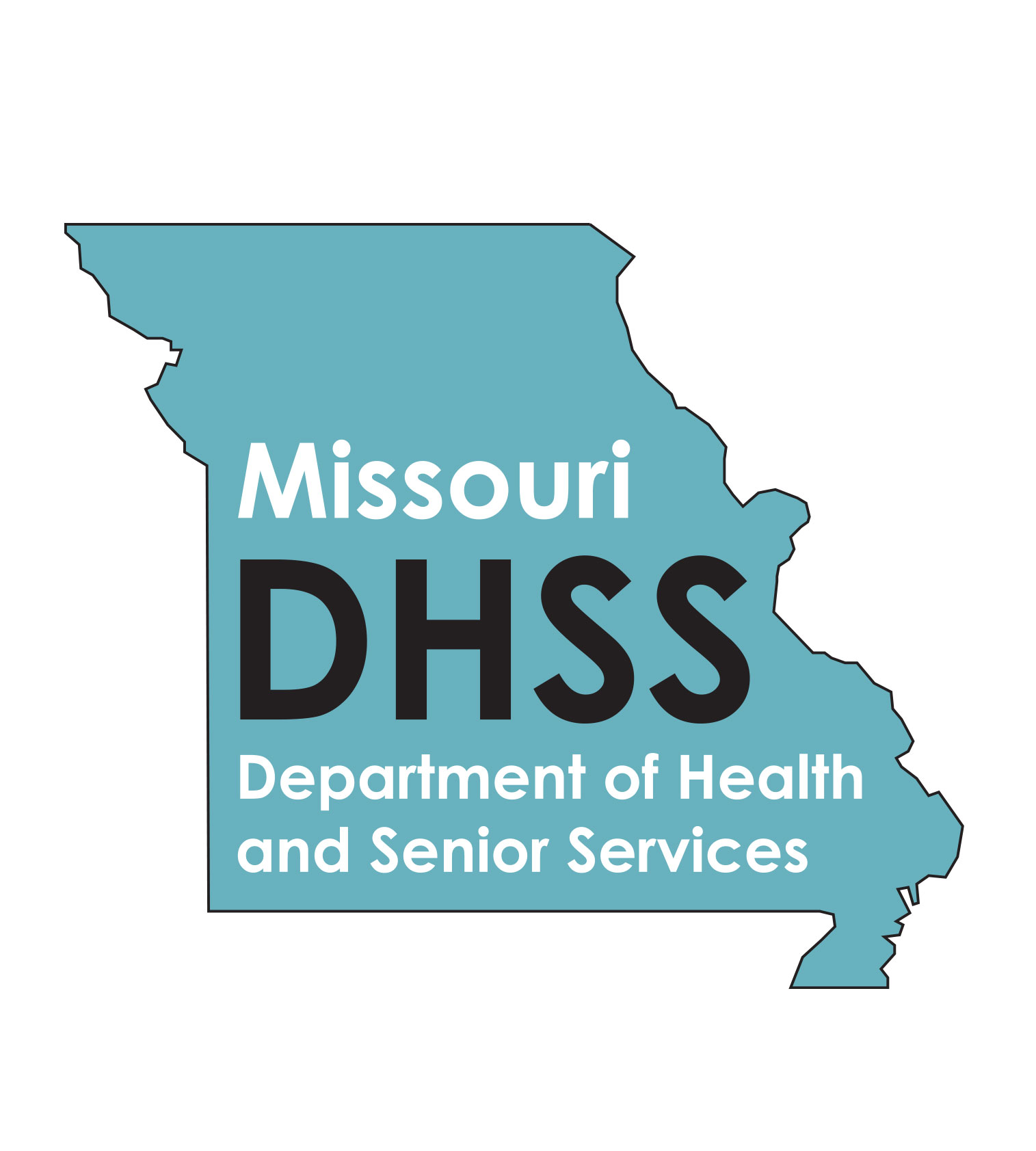Health and Senior Services logo